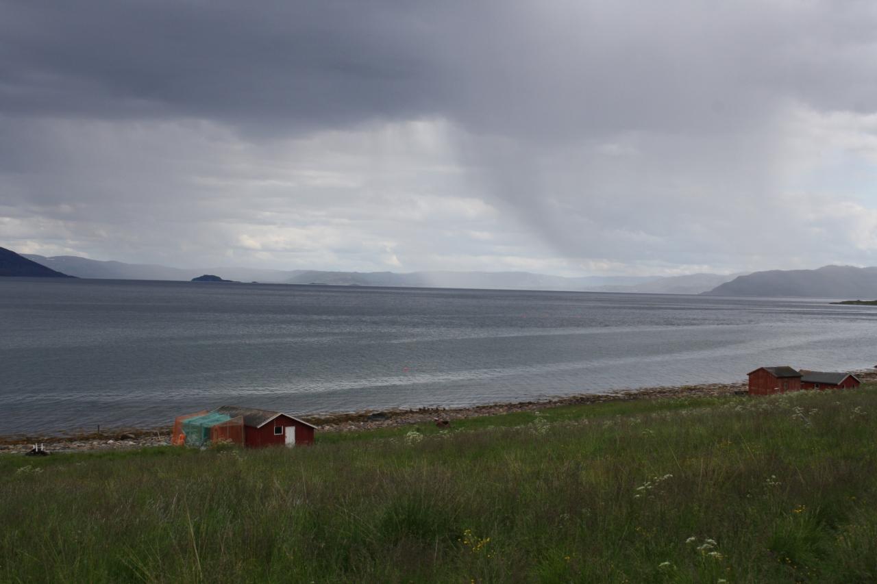 Rain near Alta.