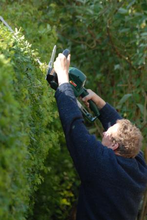 Klausbernd beim Hecke schneiden, Rhu Sila, Cley, Norfolk Photo Hanne Siebers