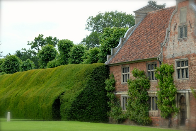 Hedge at Blickling Estate, Norfolk Photo: Hanne Siebers