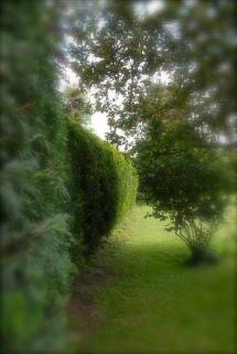 Rhu Sila Garten, Cley next the Sea, Norfolk Photo: Hanne Siebers