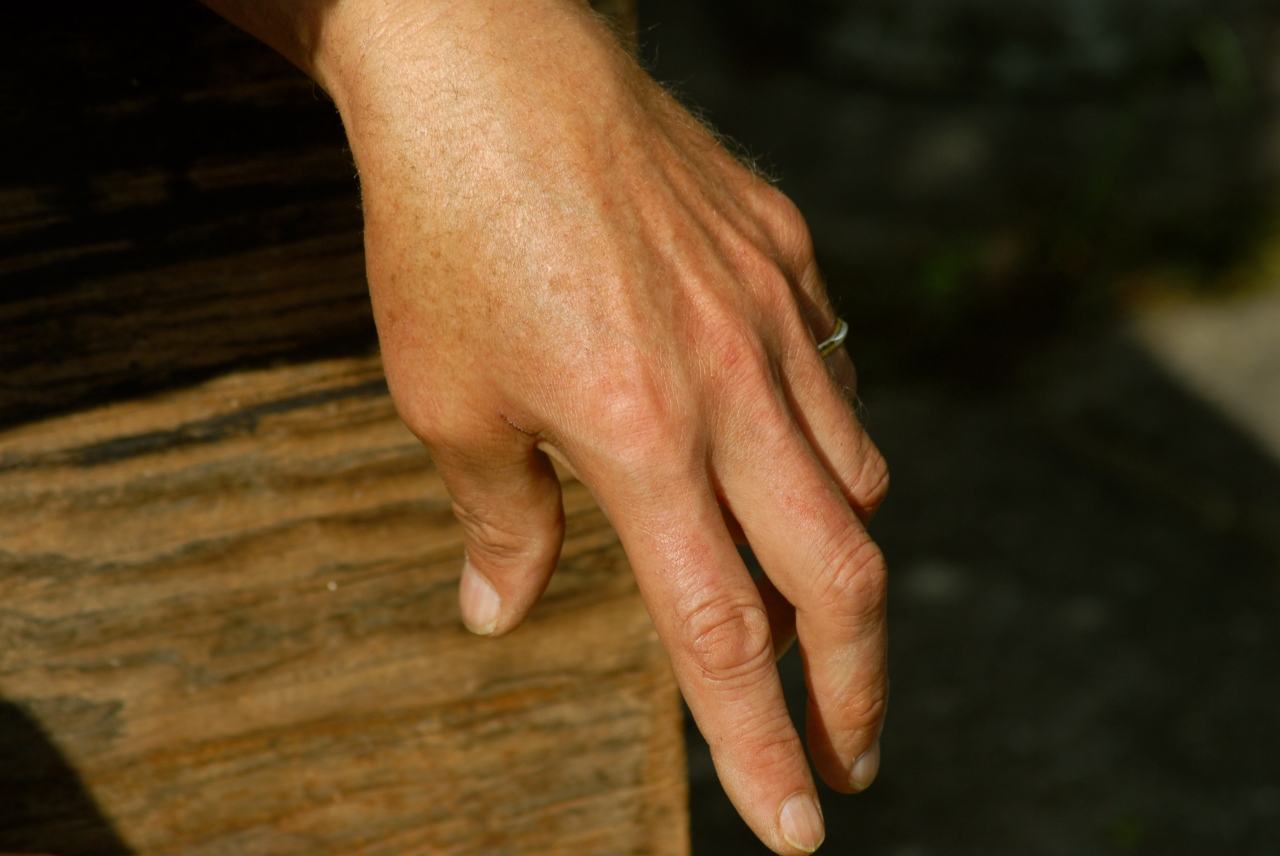 Hand, Klausbernd Vollmar, Photo: Hanne Siebers