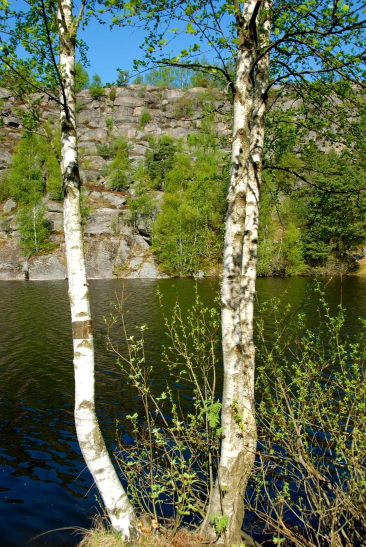 DSC_0097 Bingedammen, Fredrikstad, Norway Foto Hanne Siebers