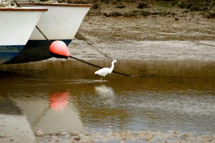 Blakeney 288, Coast path, Norfolk, Foto: Hanne Siebers