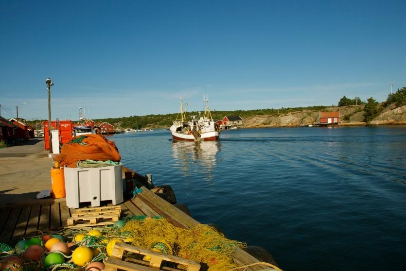 DSC_0053 Hvaler, Norway, Foto: Hanne Siebers