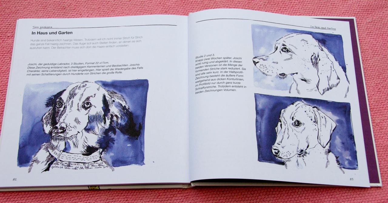 Hunde zeichnen bei Susanne Haun, Foto: Hanne Siebers