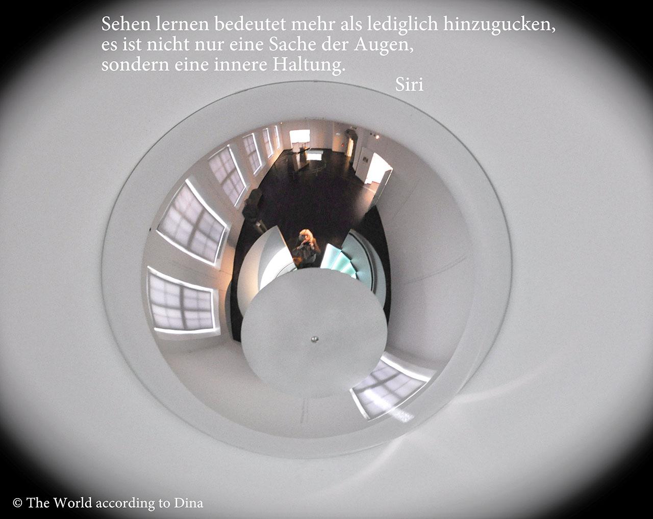 Hanne Siebers_Glashütte 007_Siri_klein