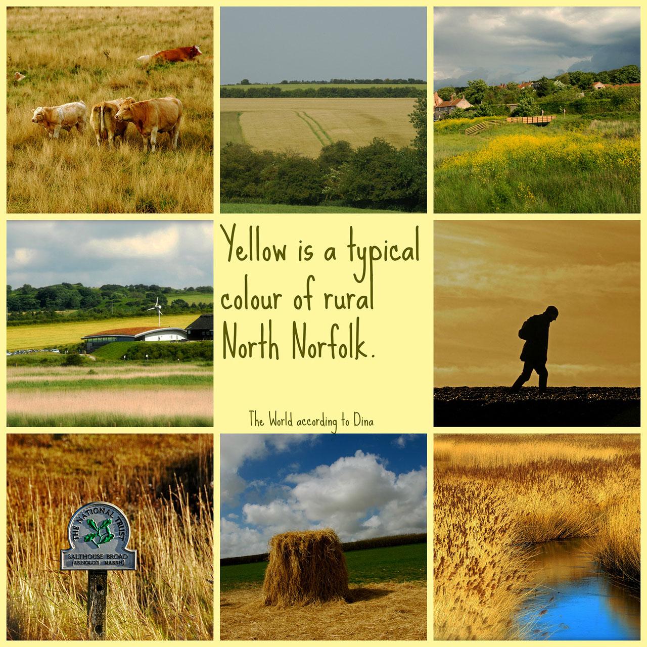 Hanen Siebers_RuralNorfolk_klein