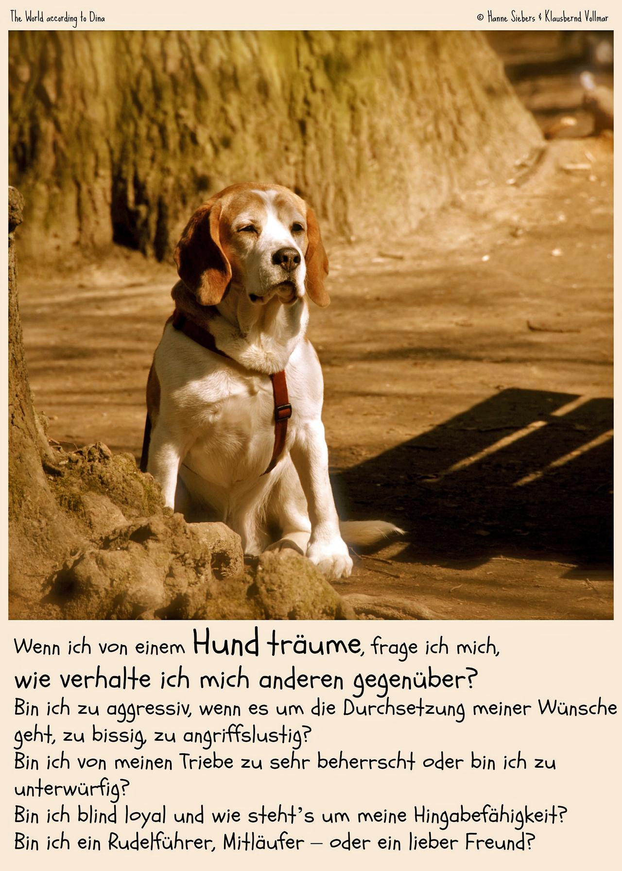 Hanne Siebers Traumhund1_klein