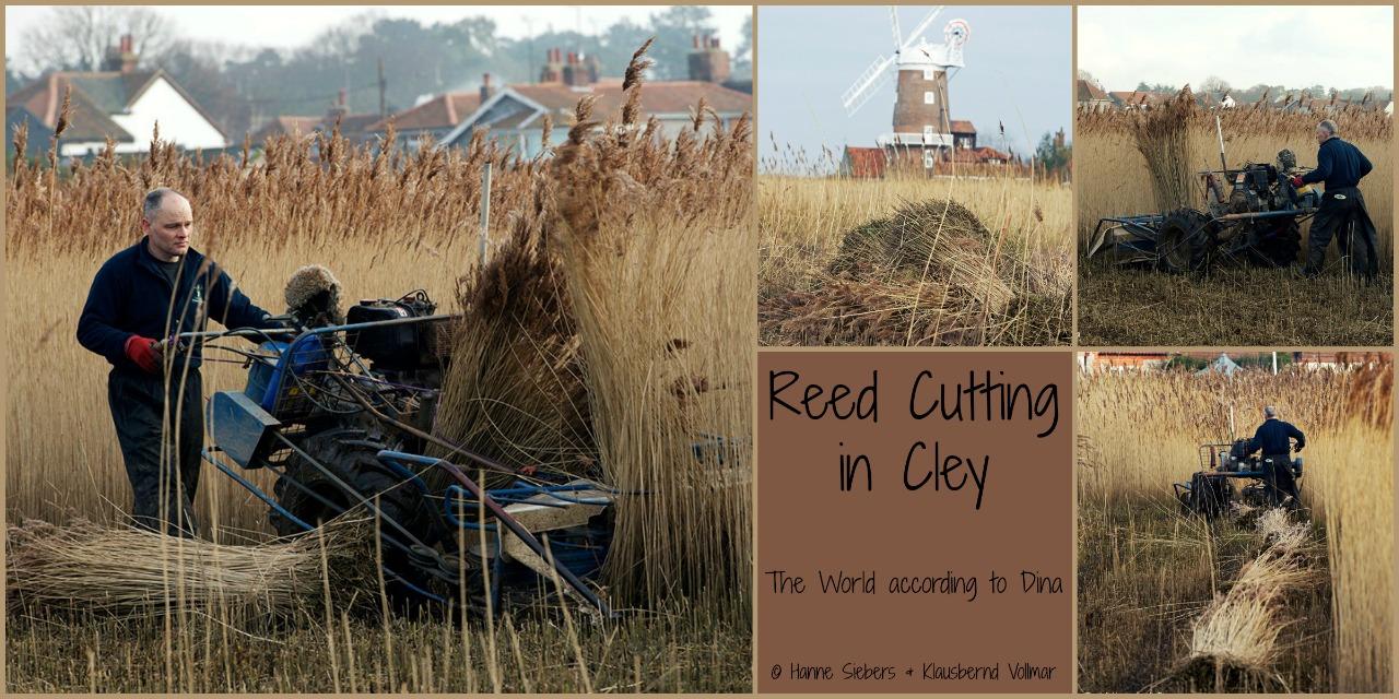 Reedcutting_Cley