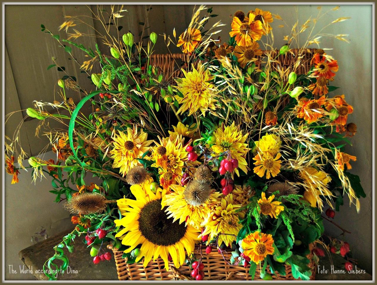Hanne Siebers_Herbstblumen03a