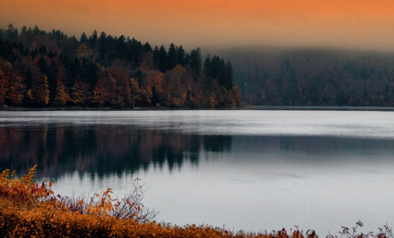 Autumn_HanneSiebers