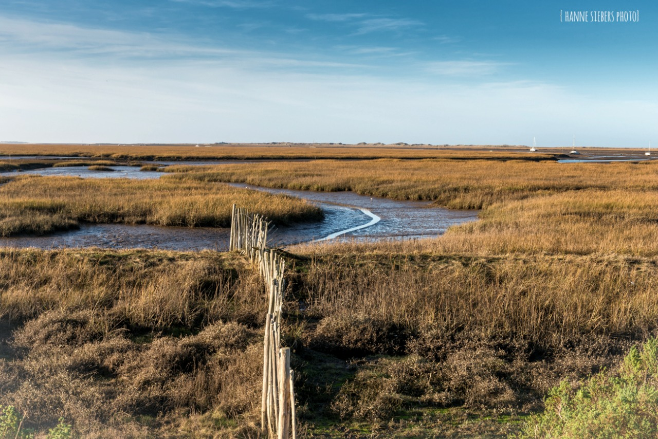 cley_marshes-sign