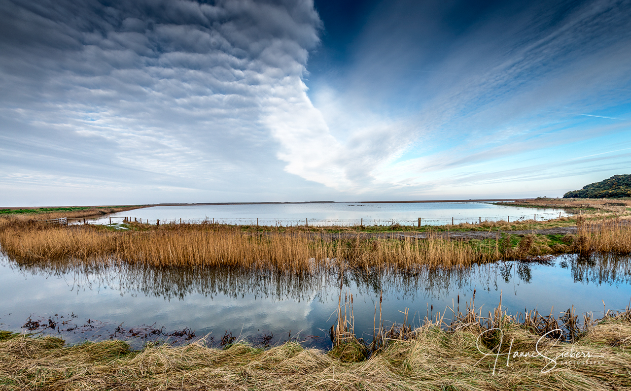 11adebbd949 World Wetland Day | The World according to Dina
