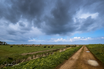 The coast path towards Blakeney Freshes